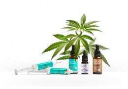 Czy olejki z CBD mogą zastąpić tradycyjną farmakoterapię? Obalamy mity!